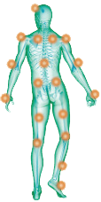dolori muscolari body trainer ditv