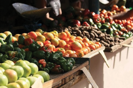 mercatini-bio-bologna-natale-2015-ditv-emilia-romagna
