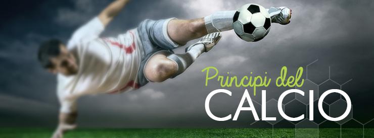 Principi del calcio